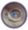 DSC03793B Circle.png