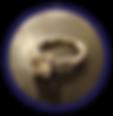 meg's ring circle.png