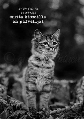"""Korttitaulu """"Kissoilla on palvelijat"""""""