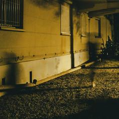 shadow wall