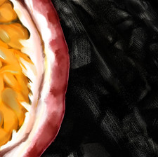 passion fruit on coal
