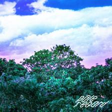 pale regard album cover APPEL D'AIR