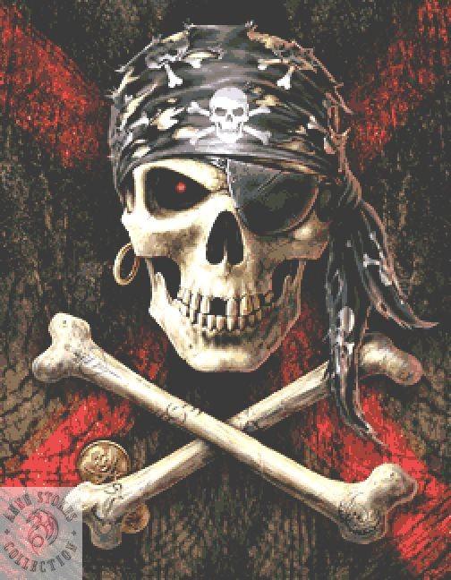 Pirate Skull Cross Stitch  Kit - Anne Stokes