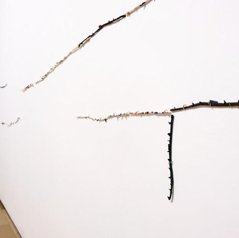 Detailansicht Rosenäste