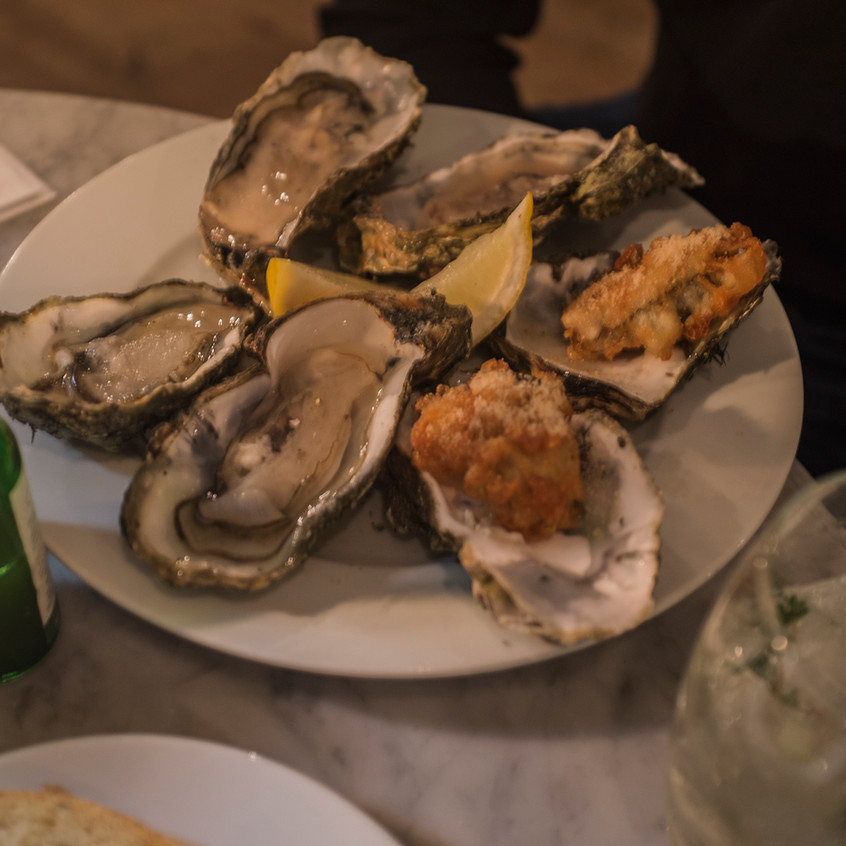 wyatt and jones oysters