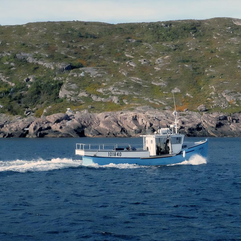 cod fishing boat - small