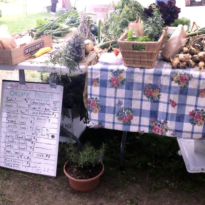 organic veg - small