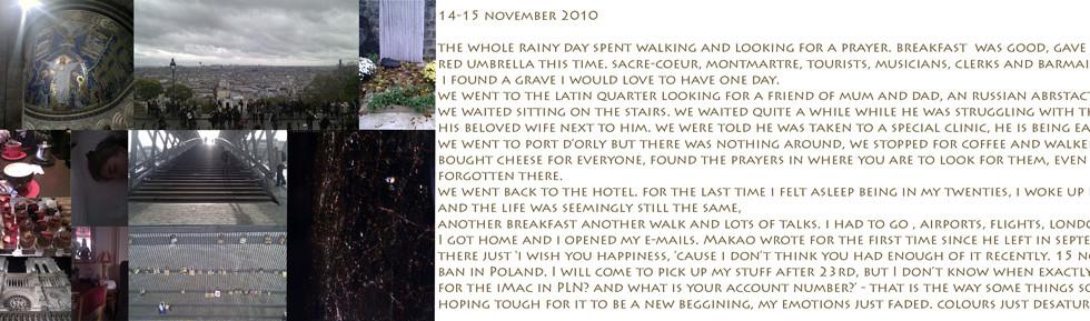 15 november 2010