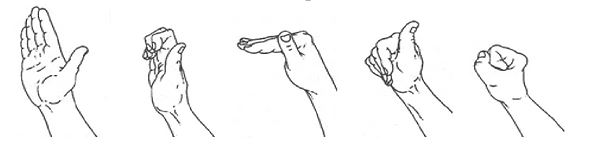 tendon and nerve glide exercises.png