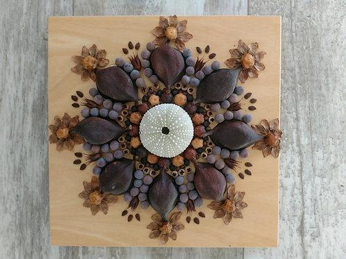 Sea Urchin Mandala