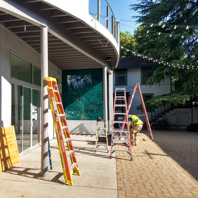 """Our Garden""  Installations in progress in the Pence Gallery courtyard, Davis CA. Waterjet cut alluminum."