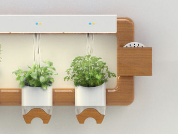 Urthy: At-home Herb Growing