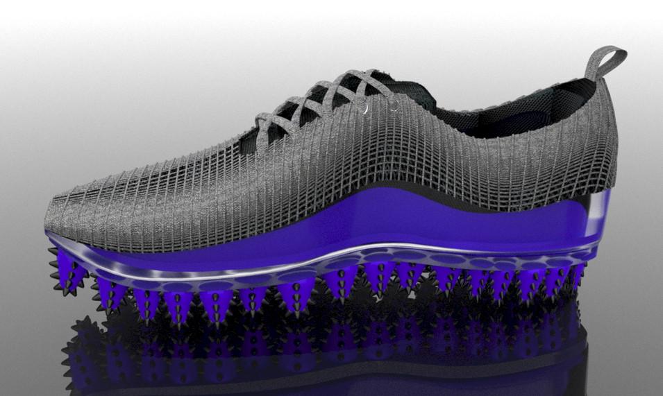 shoe1.jpg
