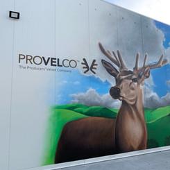 Provelco Deer Mural