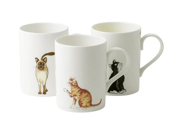 Taza gatos (elige el modelo)