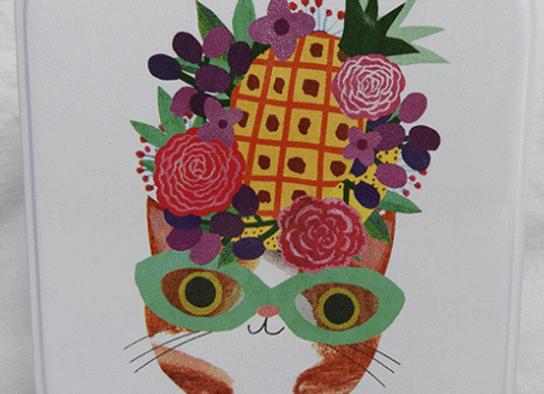 Lata pequeña gato con sombrero