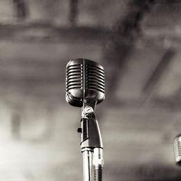 vocal-300x300.jpg