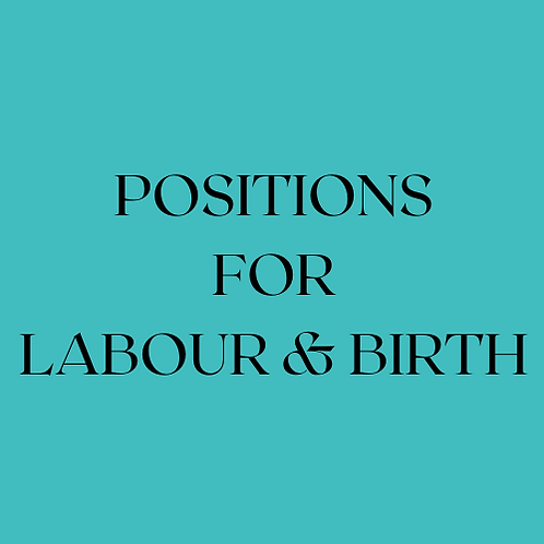 Labour & Birth Positions