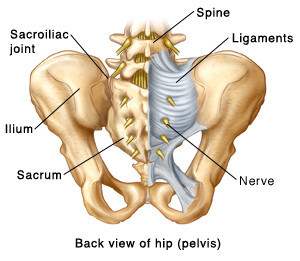 5 Exercises that can help Decrease your Sacroiliac Joint or SIJ Pain.