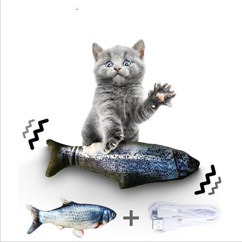 Peixe Maluco Catnip