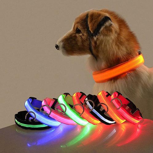Coleira Dog LED USB
