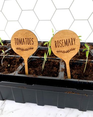 plantstake-herbs-1.jpg