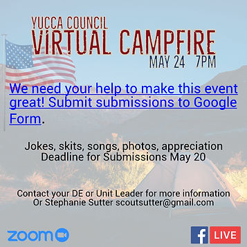 2020 virtual campfire leaders social gra