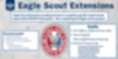 Twitter Eagle Scout Extension.png