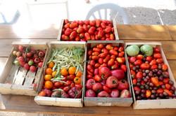 chambre-hote-provence-legumes-repas
