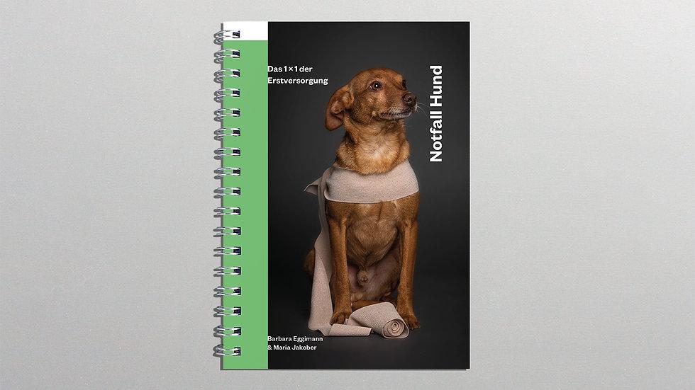 Ratgeber Notfall Hund