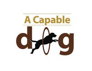 A Capable Dog training