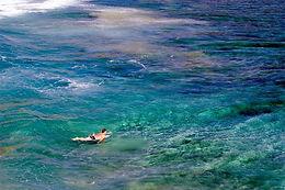 hawaii reef friendly susncreen