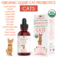 Cat_Probiotic_Amazon_Photo_grande.png