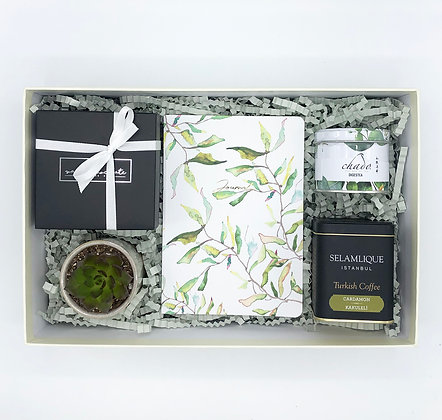 Green Journal Box 1