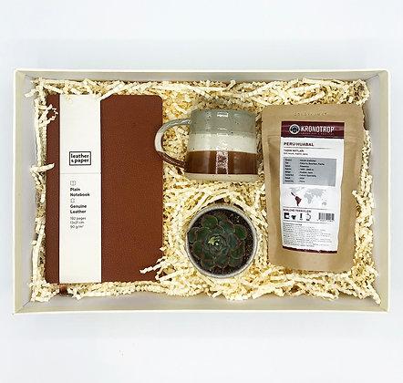 Brown Coffee & Cactus Big Box