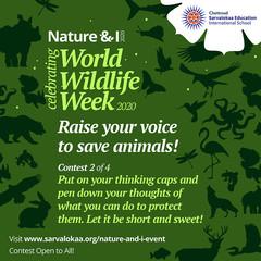 world-wildlife-week-c2.jpg