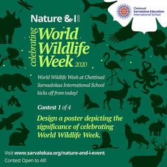 world-wildlife-week-c1.jpg