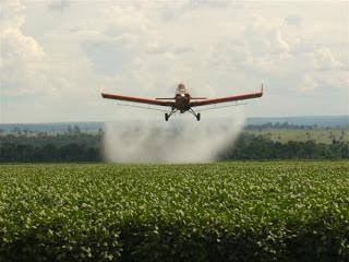 A revolução verde contribuiu com a redução da fome?