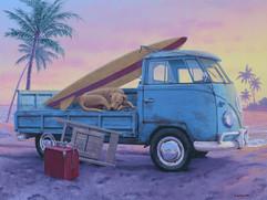 """The Beach Boy"""