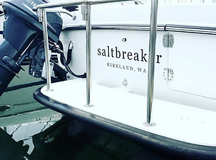 Saltbreaker.png