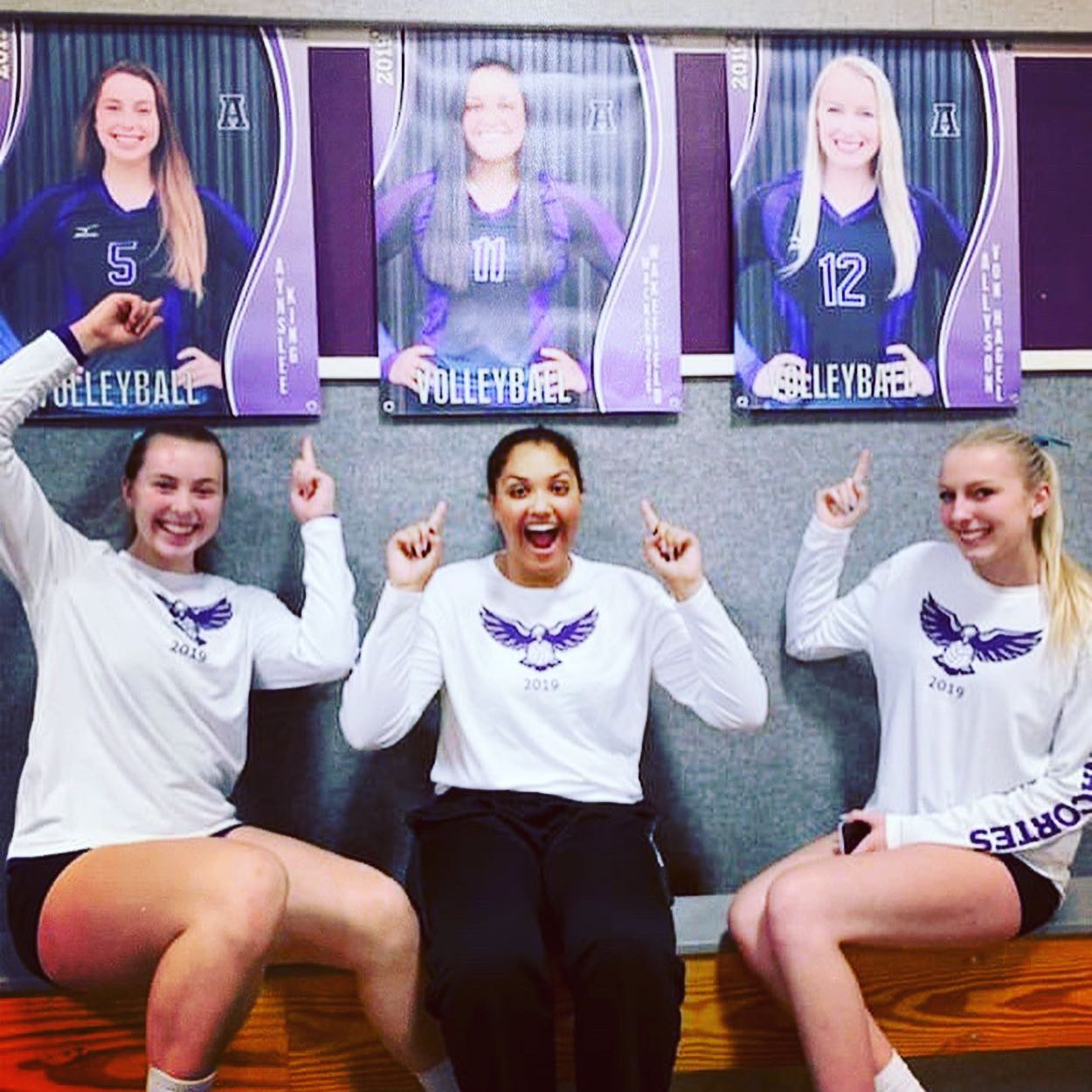 AHS Senior Volleyball Banners.jpg