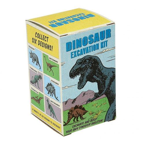 Dinosaur Small Excavation Kit