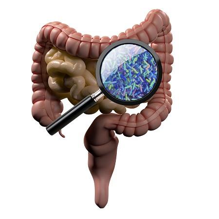 microbiota testing