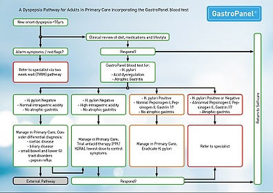 GastroPanel Pathway Primary Care 03-2019