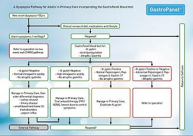 GastroPanel Pathway Primary Care 03-2019