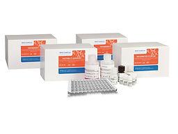 GastroPanel (Pepsinogen I, Pepsinogen II, H. pylori IgG and Gastrin-17 ELISAs)