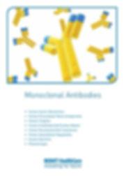 Mab brochure.jpg