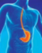 Non-invasive diagnosis of reflux in primary care