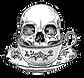 skull%20logo_edited_edited.png