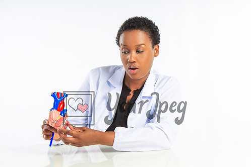 Female doctor looking at heart model